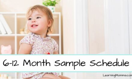 Babywise 6 Month Schedule Through 12 Month Schedule Sample