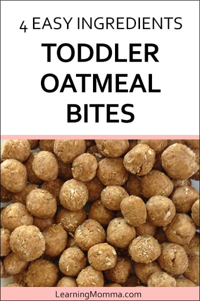 Toddler Snack Recipe