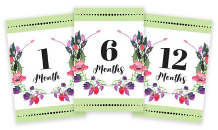 Cards For Monthly Baby Pictures – Light Green & Floral Design