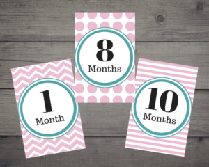 Monthly Baby Picture Cards - Pink & Teal