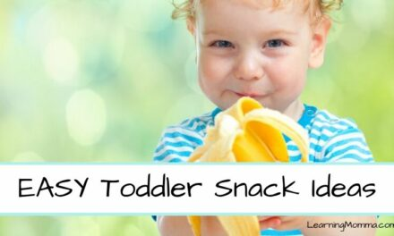 SUPER EASY Toddler Snack Ideas – Healthy, Grab & Go, And More!